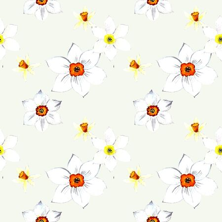 Seamless pattern with narcissus watercolor illustration on white background Banco de Imagens