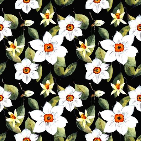 Seamless pattern with narcissus and leaves watercolor illustration on dark background