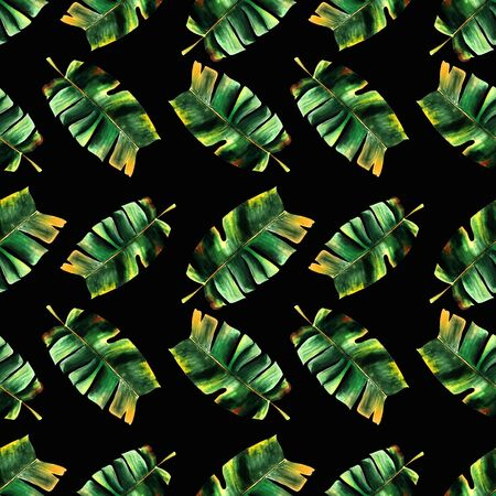 Seamless pattern with banana leaves on black background Hand draw illustration.