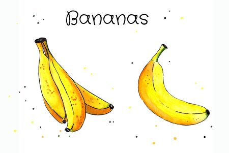 Set of bananas on white background. Hand draw illustration. Markers drawing