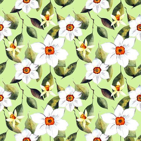 white daffodils watercolor illustration on dark background Banco de Imagens - 128747874
