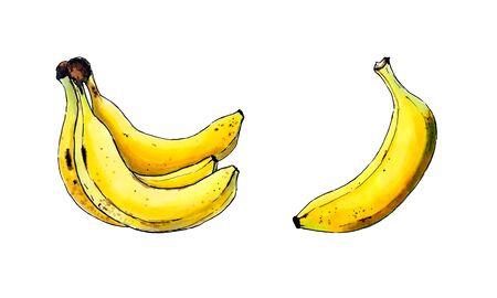 Set of bananas on white background. Hand draw illustration Banco de Imagens - 128747878