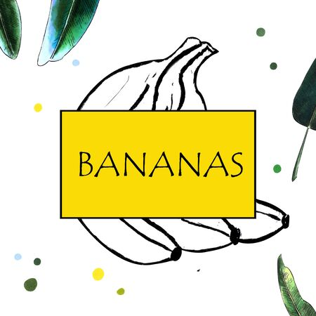Bananas and leaves. Hand draw illustration on white background. Marker illustration Banco de Imagens - 128747886