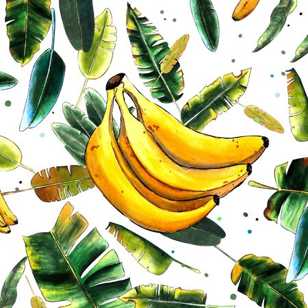 Bananas and leaves. Hand draw illustration on white background. Marker illustration