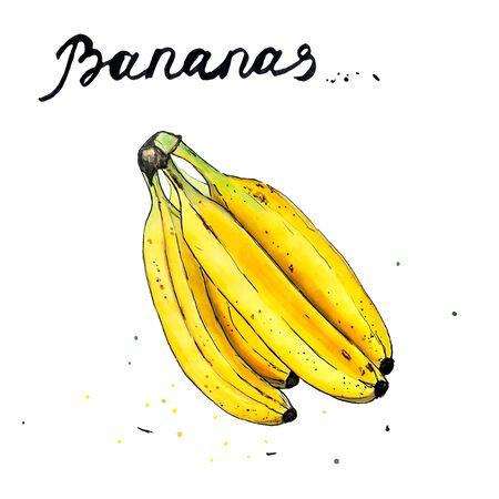 Set of bananas on white background. Hand draw illustration Banco de Imagens - 128749068