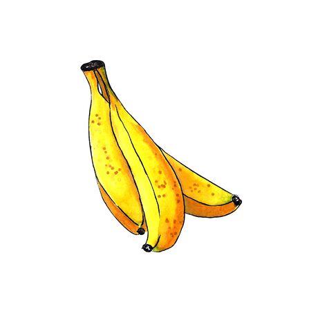 Set of bananas on white background. Hand draw illustration Banco de Imagens - 128749067