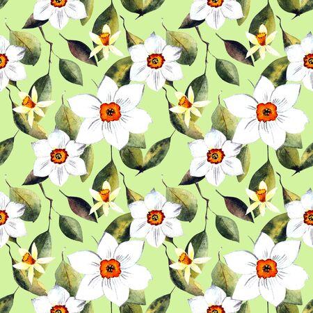 white daffodils watercolor illustration on dark background Zdjęcie Seryjne