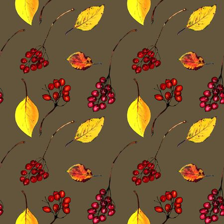 Seamless pattern with autumn leaves and berries on dark background Hand draw illustration.