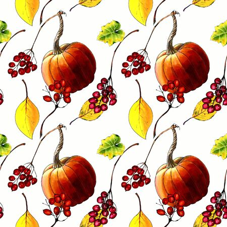 Seamless pattern with pumkins, leaves and berries on white background Hand draw illustration.