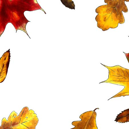 Maple and autumn leaves on white background. Markers illustration