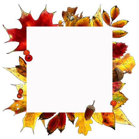 Template autumn leaves on white background Hand draw illustration