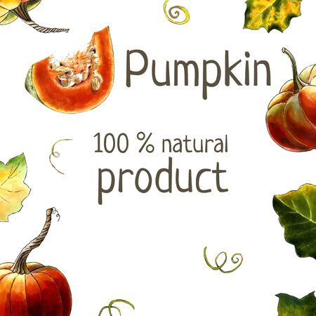 Template with pumpkins and leaves on white background Hand draw illustration 写真素材 - 133824759
