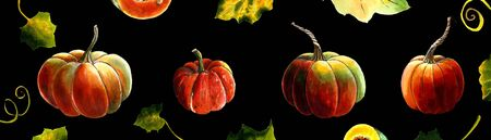 Set of pumpkins on black background Hand draw illustration Stok Fotoğraf