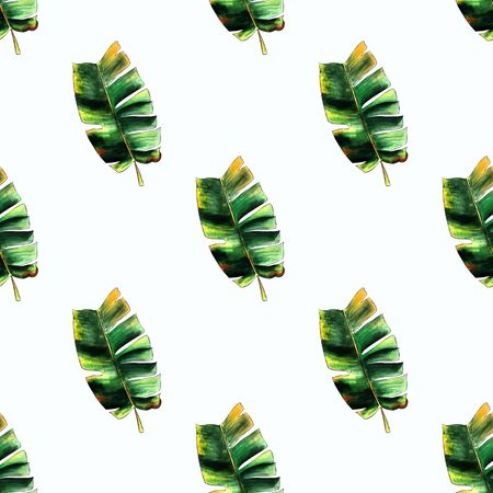 Seamless pattern with banana leaves on white background Hand draw illustration.