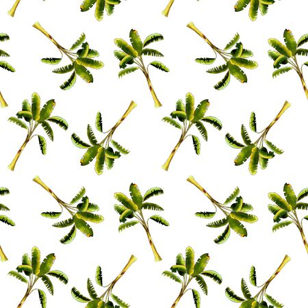 seamless pattern with banana tree on white background. Hand draw illustration Banco de Imagens