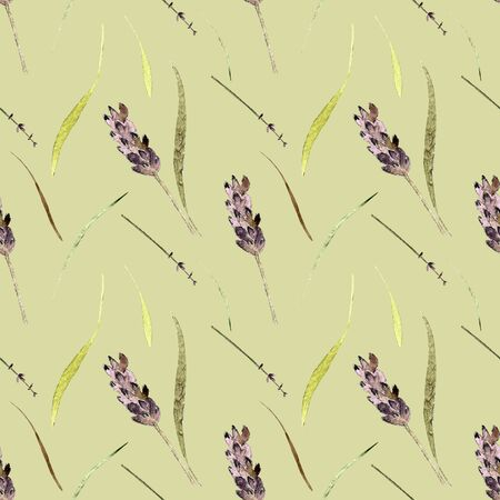 Seamless pattern with herbs and lavender on green background Watercolor illustration