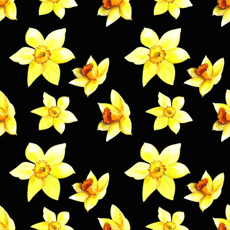 Seamless pattern with narcissus and leaves watercolor illustration on black background 版權商用圖片