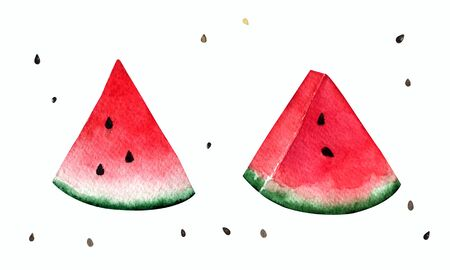Set of four slices of watermelon, isolated on white background. Watercolor illustration