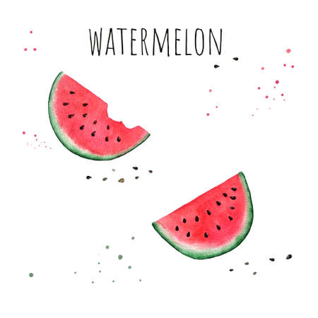 Watercolor watermelon slice on white background. Hand drawn illustration.