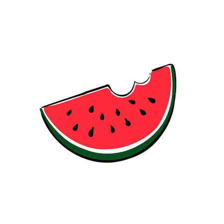 Watermelon slice on white background. Hand drawn illustration. Vector illustration