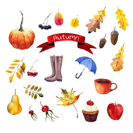 Set autumn elements: rubber boots, umbrella, apple, leaves, berries, pumpkin, cupcake. Watercolor illustration Zdjęcie Seryjne