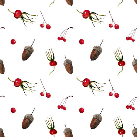 Seamless pattern with autumn berries and acorns on white background. Watercolor illustration.