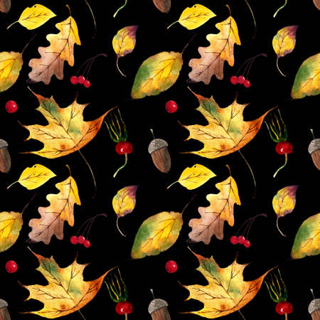 Seamless pattern with autumn leaves, berries, acorns on black background. Watercolor illustration.