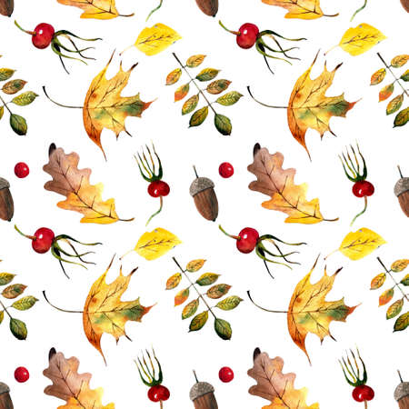 Seamless pattern with autumn leaves, berries, acorns on white background. Watercolor illustration.