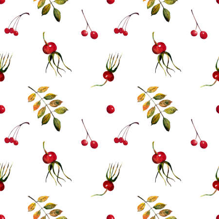 Seamless pattern with autumn leaves and berries on white