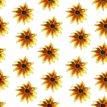 Seamless pattern with yellow flowers on white background. Hadn drawn illustration.