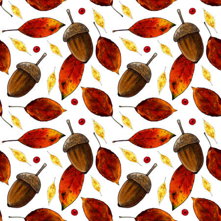 Seamless pattern with autumn leaves and acorns on white background. Hand draw illustration. Zdjęcie Seryjne