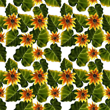 Seamless pattern with leaves and yellow flowers on white background. Hand draw illustration. Zdjęcie Seryjne