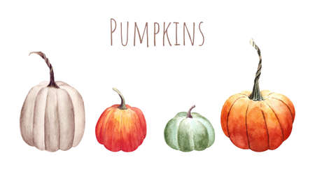 Set of pumpkins on white background. Watercolor illustration Zdjęcie Seryjne