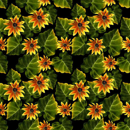 Seamless pattern with leaves and yellow flowers on black background. Hand draw illustration.