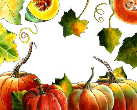Template with pumpkins and leaves on white background Hand draw illustration Zdjęcie Seryjne
