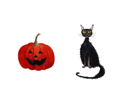 Black cat with pumpkin on white background. Watercolor illustration