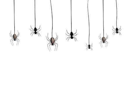 Halloween spidesr on white background. Happy Halloween. Watercolor illustration