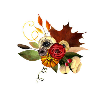 Fall arrangements with flowers, leaves, berries. Hand drawn illustration