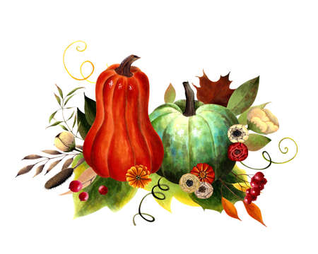 Fall arrangements with pumpkins, leaves, flowers, berries. Hand drawn illustration