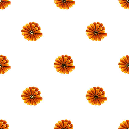 Seamless pattern with yellow flowers on white background. Hand painted illustration