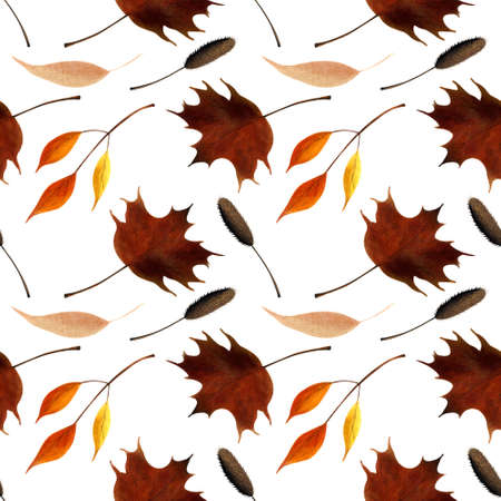 Seamless pattern with autumn leaves on white background. Watercolor illustration.