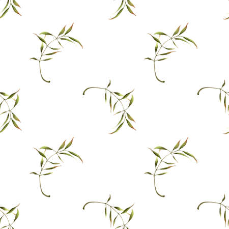 Seamless pattern with leaves on white background. Hadn drawn illustration.