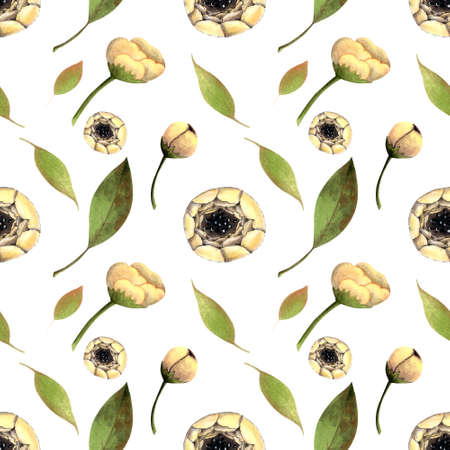 Seamless pattern with white flowers on white background. Hadn drawn illustration.