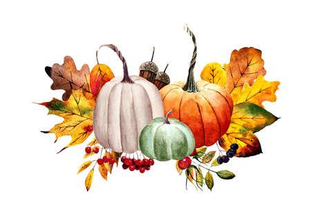 Fall arrangements with pumpkins, leaves, flowers, berries. Watercolor illustration