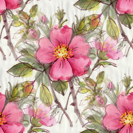 Seamless pattern with watercolor flowers. Dog rose. Vector illustration. Vector