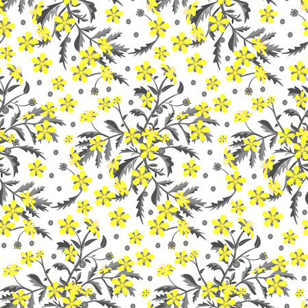 buttercup  decorative: Seamless pattern with yellow wildflowers on a white background.  Vector illustration.
