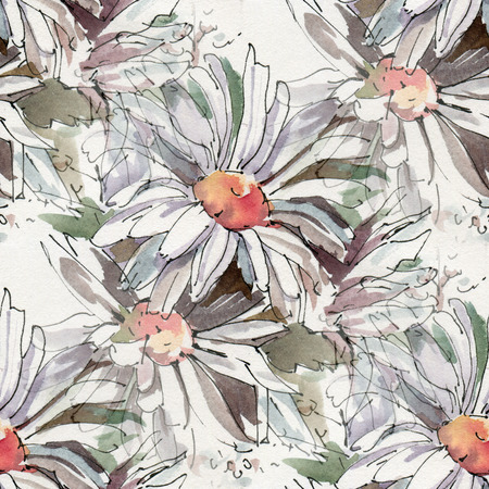 camomiles: Seamless pattern with watercolor flowers. Sketch of camomiles ink and watercolor.