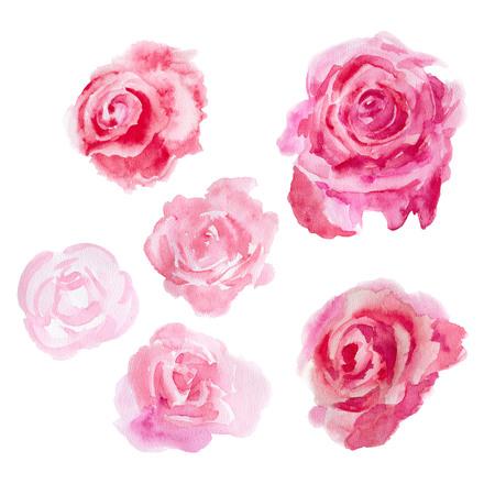 Rode rozen die op een witte achtergrond. Illustratie van de waterverf.