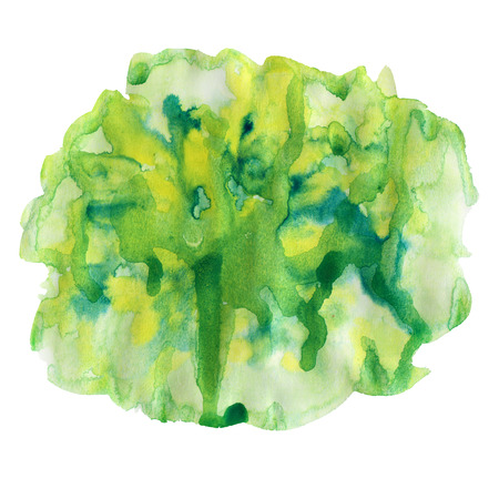 dabs: Green and yellow watercolor spot, isolated on a white background. Watercolor element for design.