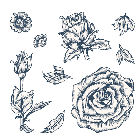 Black and white flowers elements for design. Ink in the style of antique engraving. Vintage style. Vector illustration.